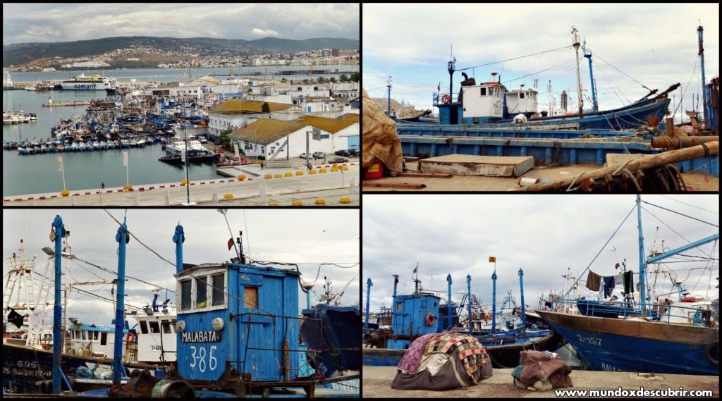 Collage puerto