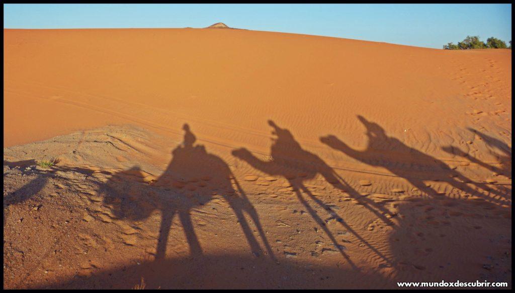 Desierto Erg Chebi