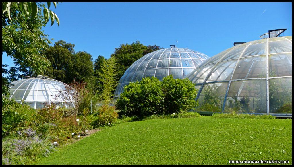 cúpulas de Zurich