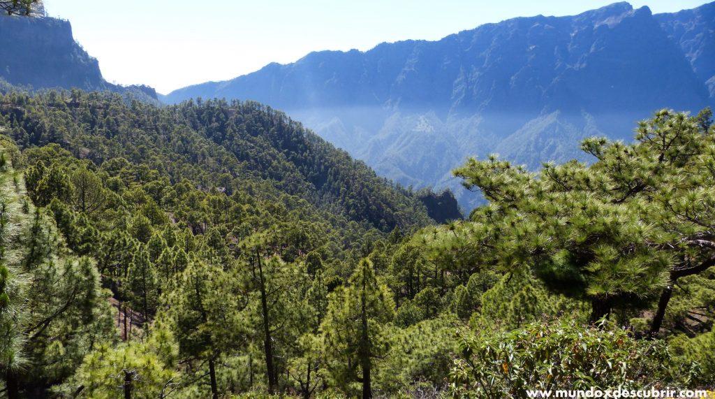 La Palma que ver