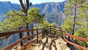 Qué ver y hacer en la isla de LA PALMA | Guía de Viaje