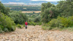 Hacer el CAMINO DE SANTIAGO | Consejos prácticos ¿Qué ruta elegir?