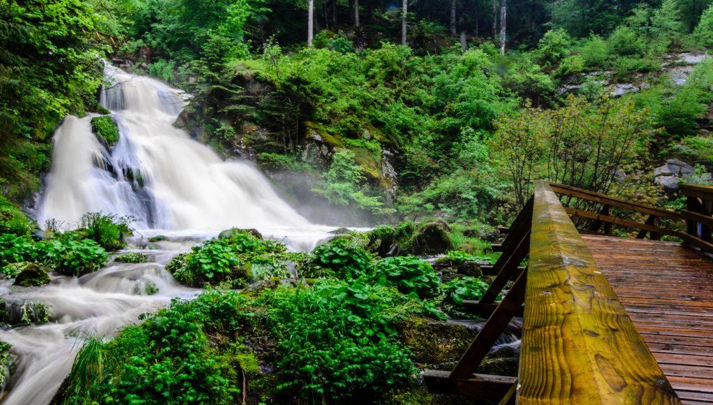 Itinerario de viaje Selva Negra