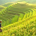 🥇 Qué ver y visitar en VIETNAM   Top 35 LUGARES
